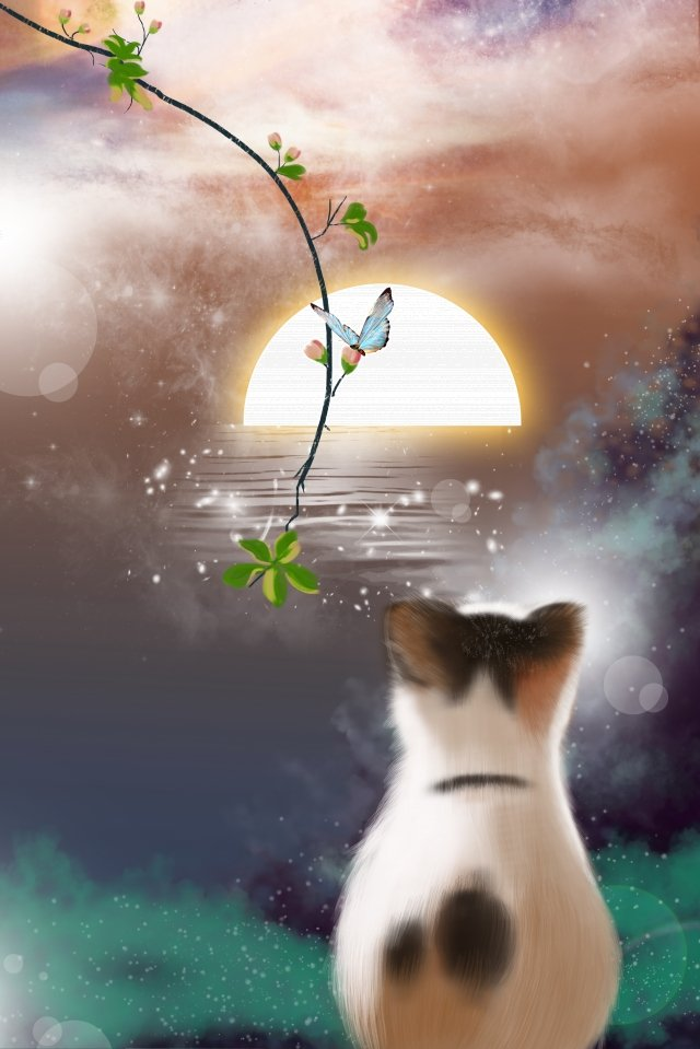summer dusk sunset cat llustration image
