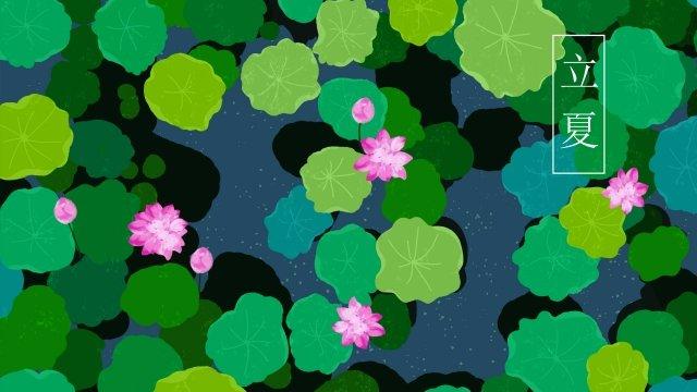 summer early summer beginning of summer lotus llustration image
