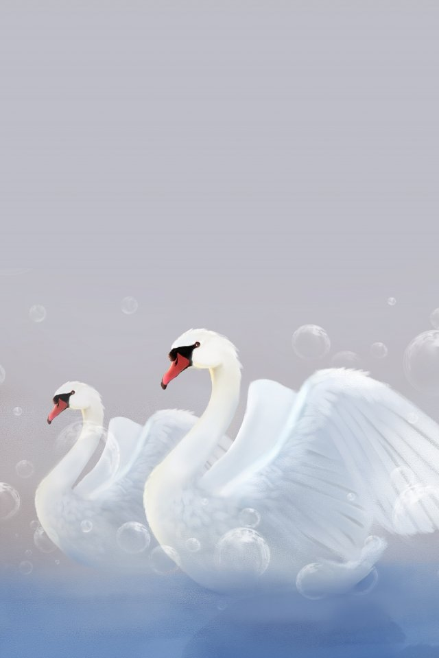 swan lakeside animal dream, Bubble, Fairy Tale, White Swan illustration image