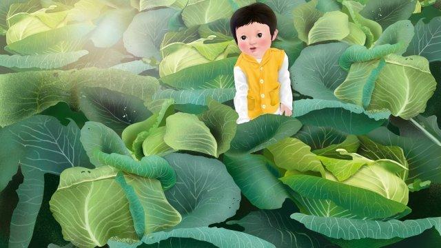 村生活アニス白キャベツ秋の収穫 イラスト素材 イラスト画像