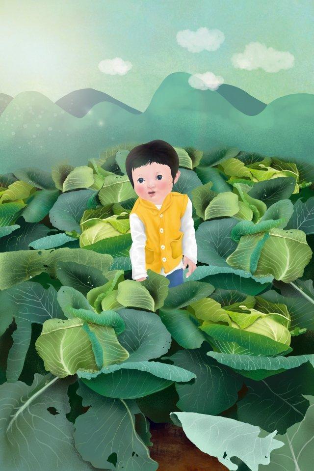 村生活アニス白キャベツ秋の収穫 イラスト素材