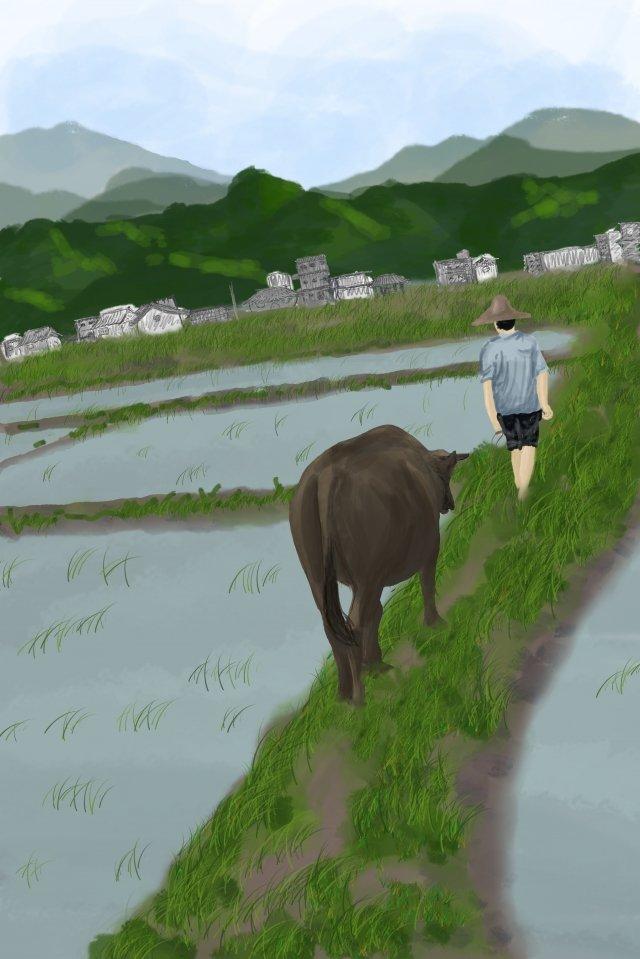 ग्राम जीवन चित्रण ग्रामीण धान का खेत चित्रण छवि
