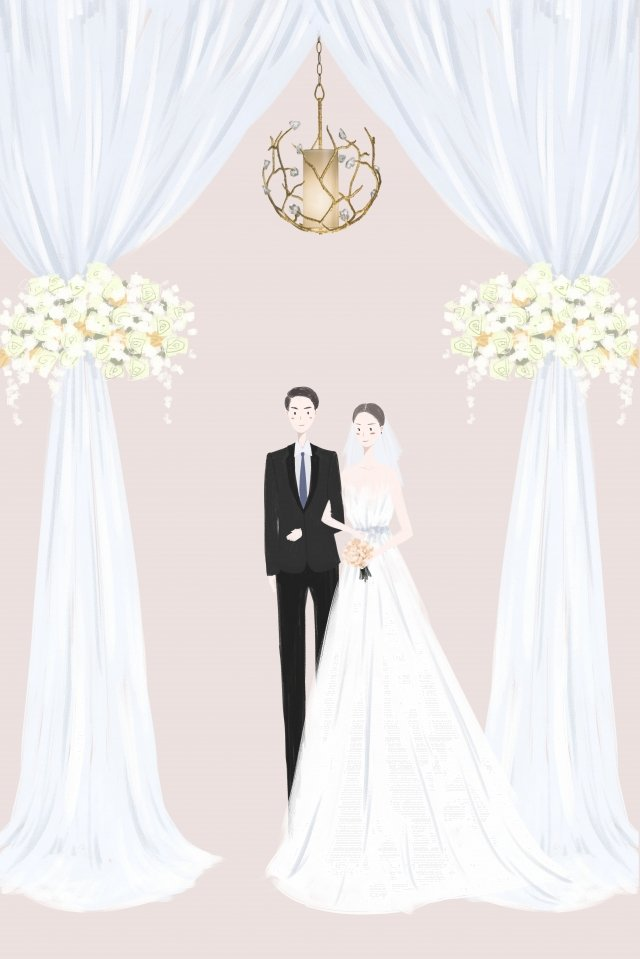 wedding marry bride bridegroom llustration image