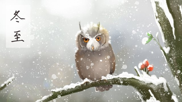 winter solstice owl winter animal llustration image