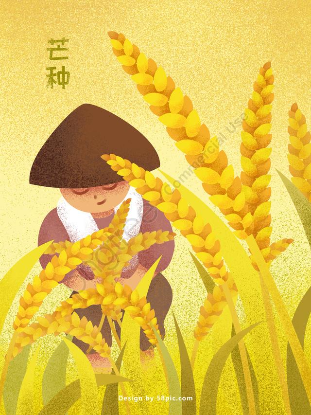 マングフェスティバルソーラーフィールドハーベストオリジナルイラストポスター, 大麦, 小麦, 収穫 llustration image