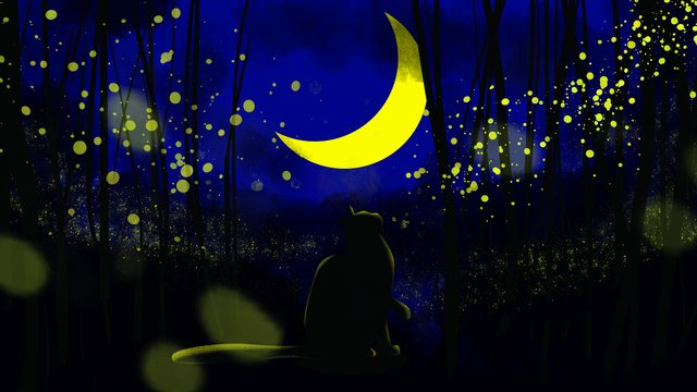 Cat looking at fireflies in the night sky, Cat, Firefly, Moon illustration image
