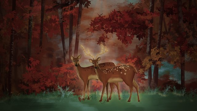 Hand drawn wind healing system forest deep deer with, Healing, Forest, Deer illustration image
