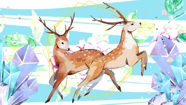 Original sika deer animal drawing childrens picture book illustration cute big, Sika Deer, Antlers, Animal illustration image