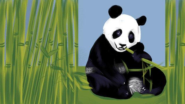 四川成都熊貓吃竹子插畫 插畫素材