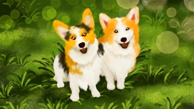 Мэн 哒 cure animal series Сентябрь Самая красивая улыбка милый Кеджи Ресурсы иллюстрации
