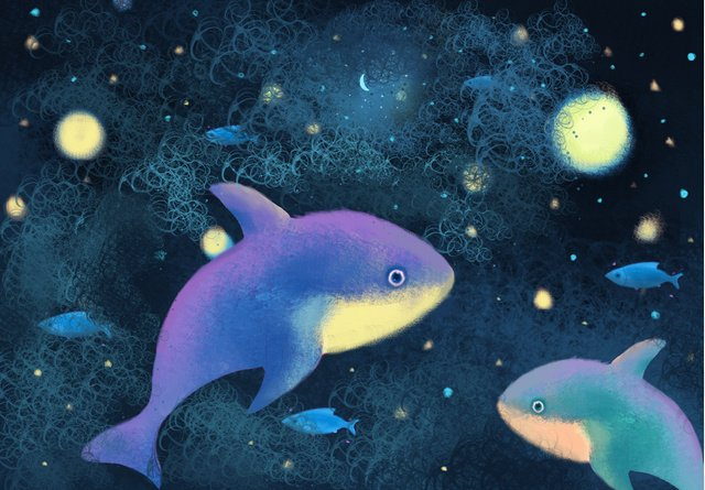 Beautiful night sky summer cure whale, Whale, Sea, Starry Sky illustration image