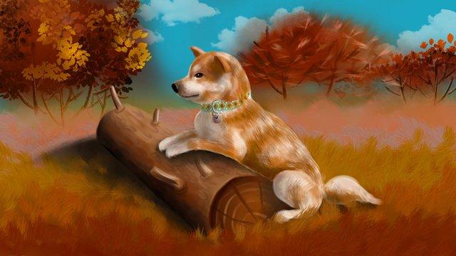 Осенний экономный луг листья милый Шиба Ину собака Ресурсы иллюстрации