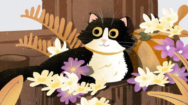 Ilustração de animal estimação gato fofoCat  Bonito  Animal PNG E PSD illustration image