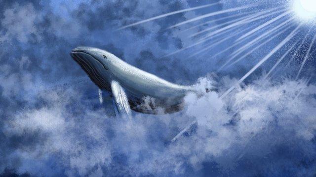 Sleepwalking wonderland healing fengyun sea whale illustration llustration image illustration image