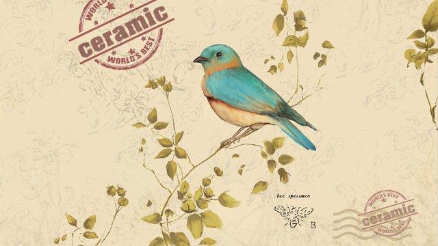 カッコウ鳥のリアルなスタイルの手描きイラスト イラスト素材 イラスト画像