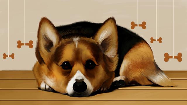 Meng 哒 puppy dog cute pet, Cute Pet, Puppy, Big Eyes illustration image