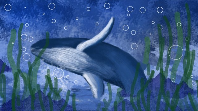 Deep sea bottom whale, Deep Sea, Whale, Seaweed illustration image