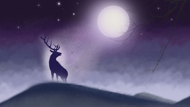 Deer moon moonlight Starry sky, On The Mountain, Cure, Dream illustration image