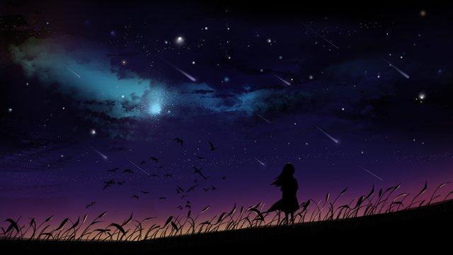 fantasy starry meteor shower girl wishing hand drawn illustration llustration image