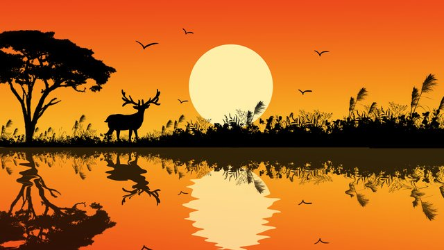 deer cure illustration poster with forest and series sunset llustration image