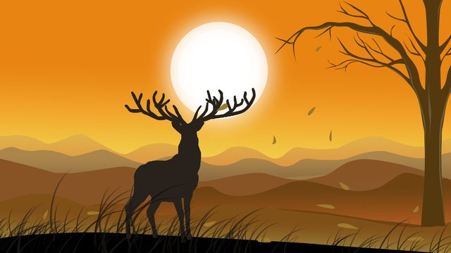 Forest with deer hand drawn illustration, Forest And Deer, Sunset, Yellow illustration image