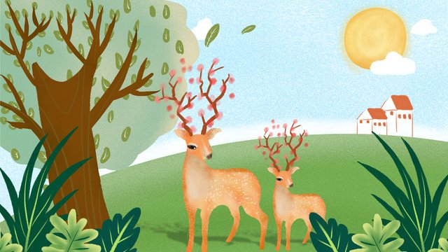 Original illustration of a deer in the forest, Forest, Fawn, Deer illustration image