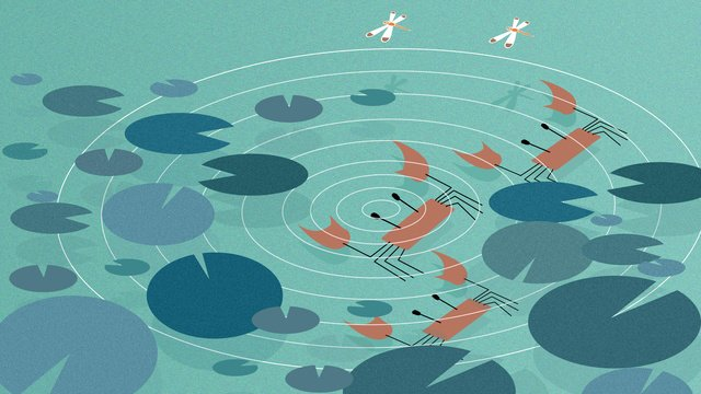 Hairy crab pond, Hairy Crab, Pond, Crab illustration image
