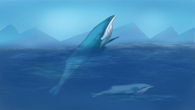 Healing deep sea whale, Healing, Sea, Whale illustration image