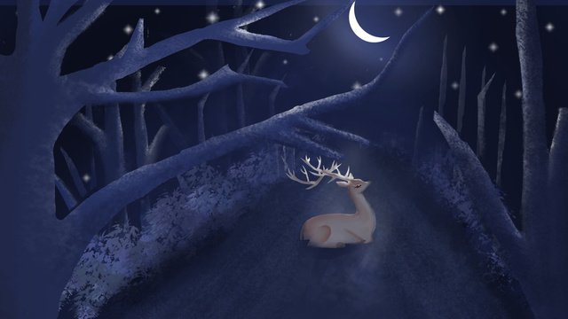 清新唯美治愈系星空林深見鹿插畫 插畫素材
