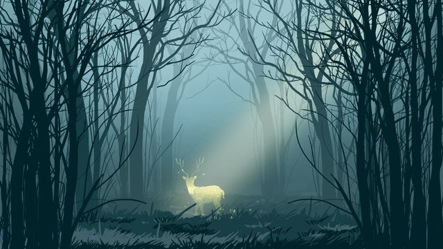 midnight foggy forest with deer llustration image
