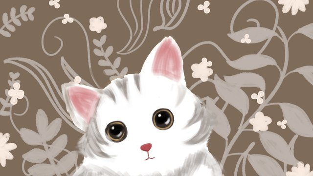 pet Cute pet Cat White cat, Flowers, Cure, Fresh illustration image