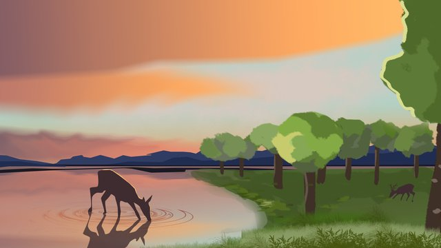 Original illustration of forest and deer in the sunset, Sunset, Forest And Deer, Original illustration image