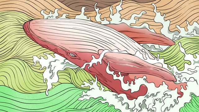 大海與鯨治愈系插畫 插畫素材 插畫圖片
