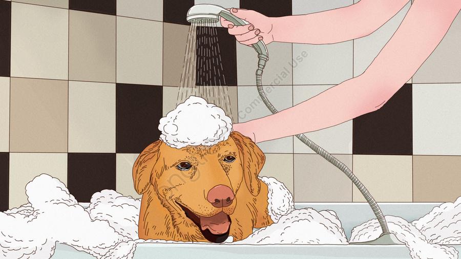 元のかわいいゴールデンレトリーバー犬かわいいペットバブル風呂手描きイラスト, かわいいペット, 黄金の髪, 犬 llustration image