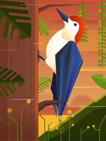 Vector illustration of a woodpecker under the nature animal forest at dusk, Nature, Animal, Forest illustration image