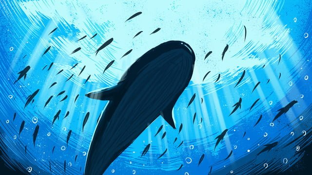 鯨魚治愈系列藍色海洋裡的鯨魚插畫海報配圖 插畫素材