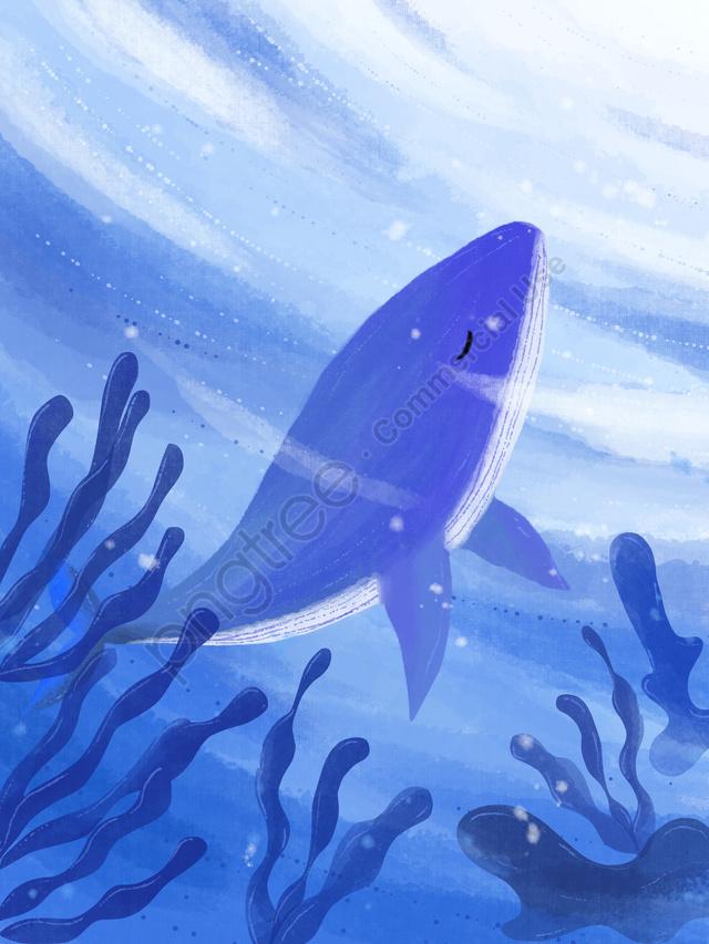 クジラillustrator治療システムを見てください, 海が青くなったらクジラを見よ, イラスト, 癒し系 llustration image