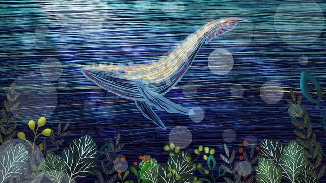 When the sea is blue see whale cure seabed scenery seaweed, See The Whale When The Sea Is Blue, Healing, Undersea Scenery illustration image
