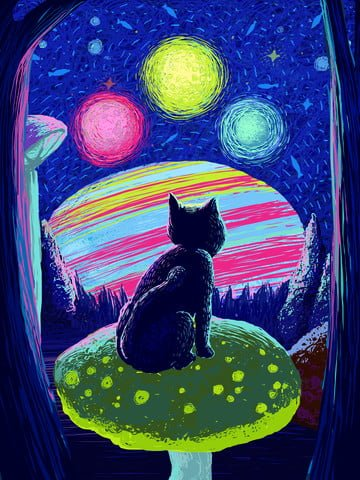 coil cures a wonderful starry sky illustration of cat in mushroom bush illustration image