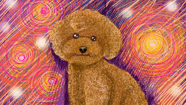 Оригинальная иллюстрация рисунка катушки teddy dog pet Ресурсы иллюстрации Иллюстрация изображения