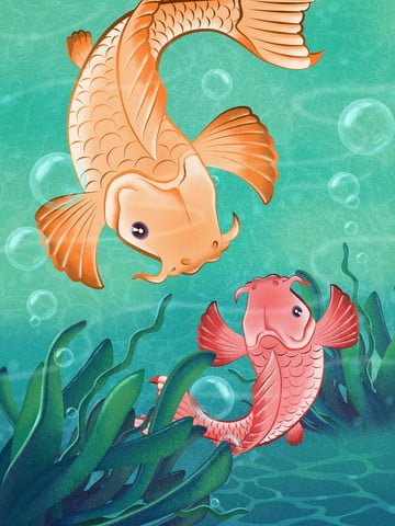 water koi swims grainy texture illustration llustration image illustration image