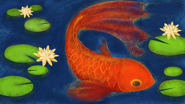 the next koi is your illustration noise lotus fish llustration image