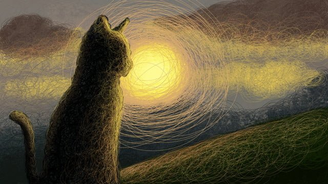 coil cure illustration cat sunrise sunset sky decoration painting wallpaper llustration image