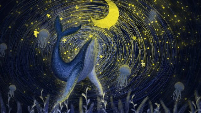 The coil is cured by a whale under wonderful starry sky, Starry Sky, Coil, Cure illustration image