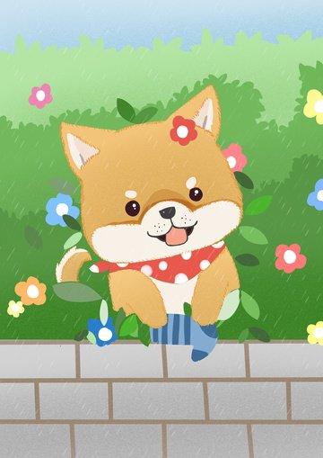 socks dog shiba inu cute pet Ресурсы иллюстрации