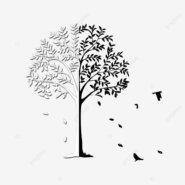Hitam Dan Putih Psd Dengan Burung Path