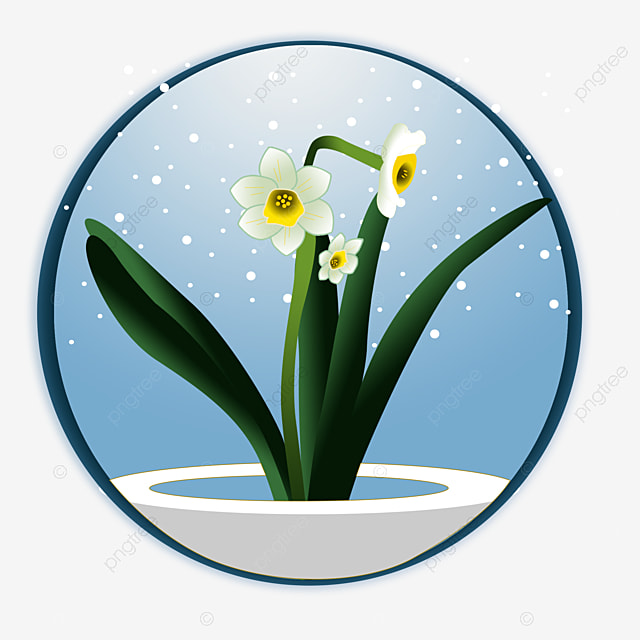 119e7f772322 fresh winter daffodils in winter color in winter cartoon simplicity chinese  style