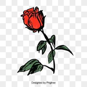 Red Rose Single Cartoon Handpainted Valentines Day Elements, Valentines Day, Hand Drawn, Rose PNG and PSD