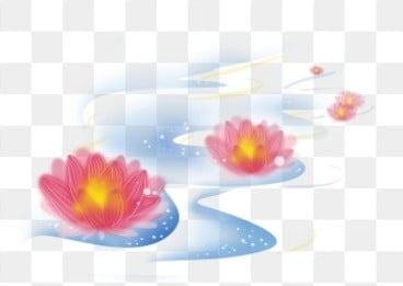 фестиваль света воды воды в озере чжунъюань lotus, лотос, речная вода, река легких PNG и PSD
