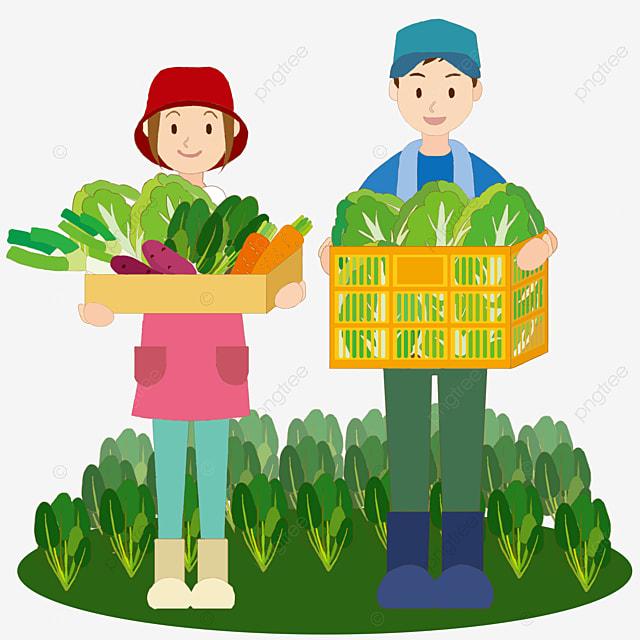 Deux Récoltes Dautomne Fermier, Couple, Automne, Agriculteur ...